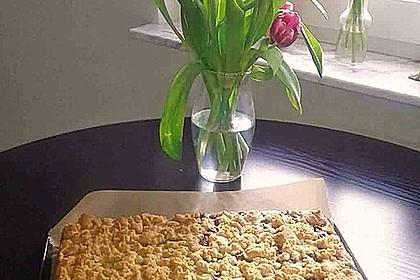 Schneller Quark-Streuselkuchen mit Obst 34