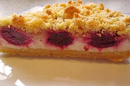 Schneller Quark-Streuselkuchen mit Obst 11