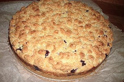 Schneller Quark-Streuselkuchen mit Obst 91
