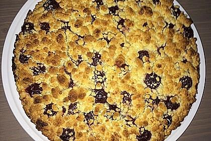 Schneller Quark-Streuselkuchen mit Obst 92