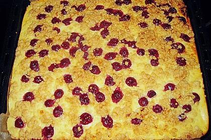 Schneller Quark-Streuselkuchen mit Obst 132