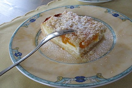 Schneller Quark-Streuselkuchen mit Obst 3
