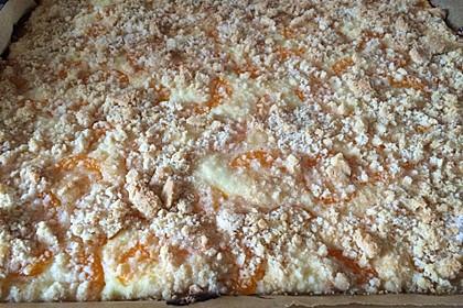 Schneller Quark-Streuselkuchen mit Obst 35