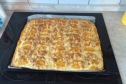 Schneller Quark-Streuselkuchen mit Obst 78