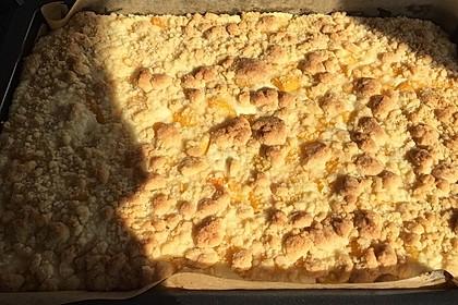 Schneller Quark-Streuselkuchen mit Obst 142