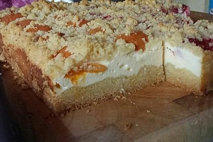 Schneller Quark-Streuselkuchen mit Obst 147