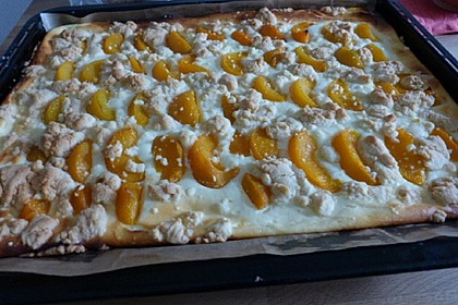 Schneller Quark-Streuselkuchen mit Obst 131