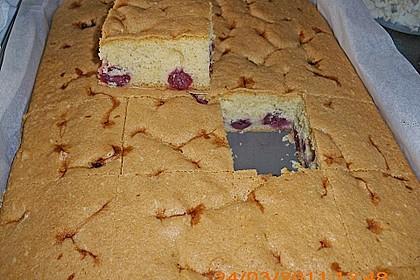 Einfacher Blechkuchen 4