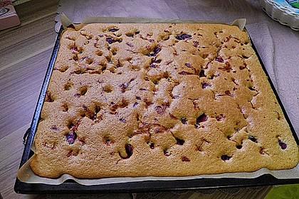 Einfacher Blechkuchen 17
