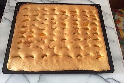 Einfacher Blechkuchen 14