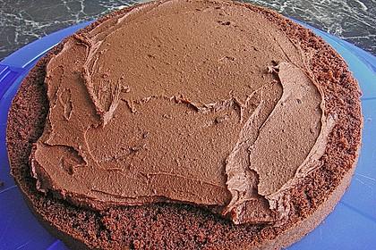 Schokolade - Buttermilch - Torte 48