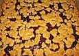 Zwetschgengrütze - Kuchen mit Mandelstreuseln