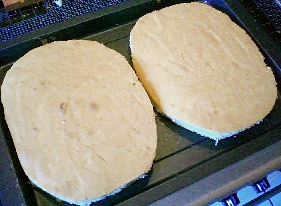 Schoko - Igel - Kuchen von dadode | Chefkoch.de