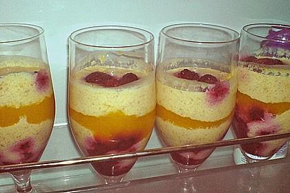 Aprikosen - Himbeer Traum 2