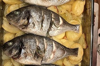 Gebackene Dorade mit scharfen Ofenkartoffeln 12