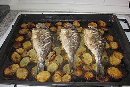 Gebackene Dorade mit scharfen Ofenkartoffeln 17