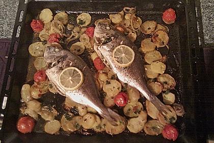 Gebackene Dorade mit scharfen Ofenkartoffeln 18
