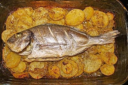 Gebackene Dorade mit scharfen Ofenkartoffeln 5