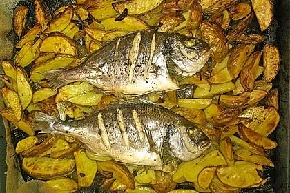 Gebackene Dorade mit scharfen Ofenkartoffeln 11