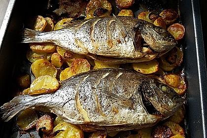 Gebackene Dorade mit scharfen Ofenkartoffeln 7