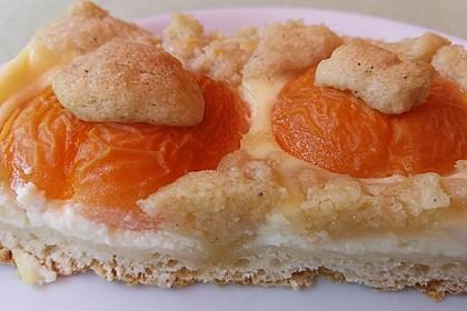 Tarte aux Abricots 51