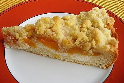 Tarte aux Abricots 59