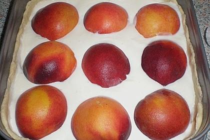Tarte aux Abricots 113