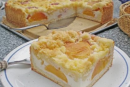 Tarte aux Abricots 9