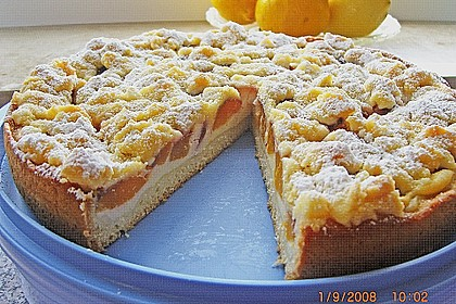 Tarte aux Abricots 44
