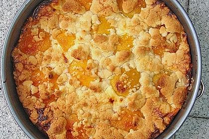 Tarte aux Abricots 68