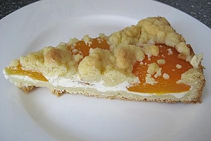 Tarte aux Abricots 17
