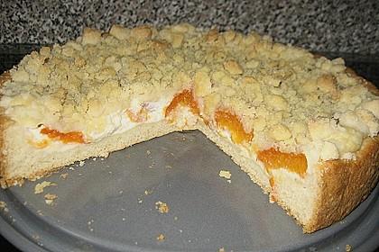 Tarte aux Abricots 79
