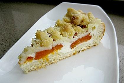 Tarte aux Abricots 25