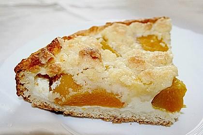 Tarte aux Abricots 46