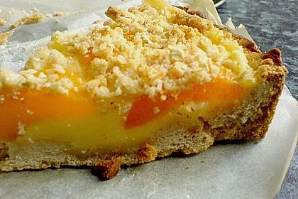 Tarte aux Abricots 110