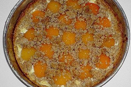 Tarte aux Abricots 114
