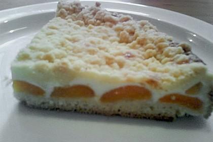 Tarte aux Abricots 129