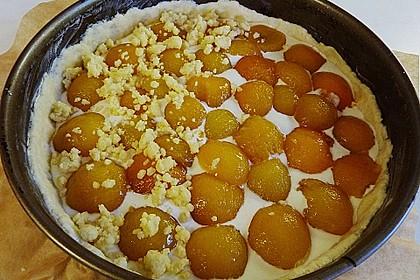 Tarte aux Abricots 116