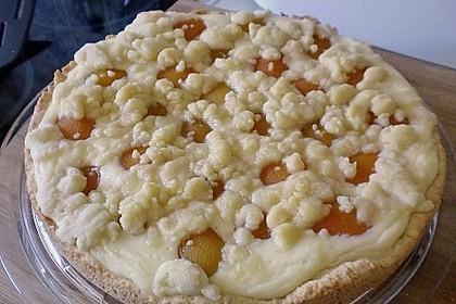 Tarte aux Abricots 93