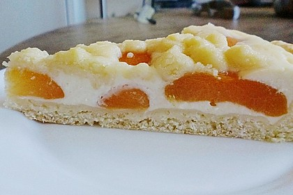 Tarte aux Abricots 80
