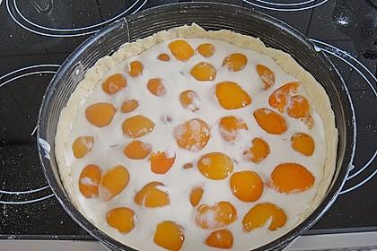 Tarte aux Abricots 125