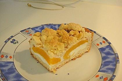 Tarte aux Abricots 74