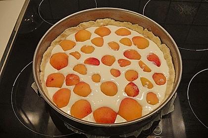 Tarte aux Abricots 97