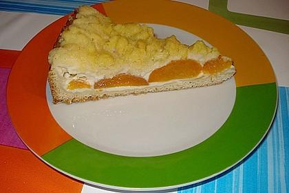 Tarte aux Abricots 31
