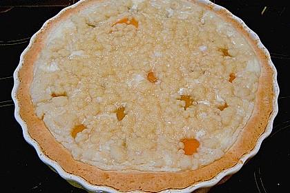 Tarte aux Abricots 126