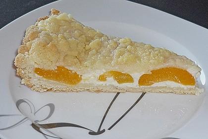 Tarte aux Abricots 52