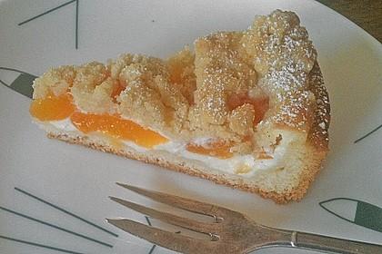 Tarte aux Abricots 94