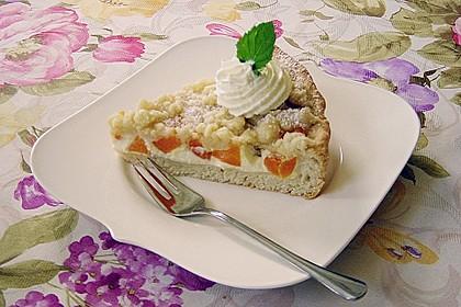 Tarte aux Abricots 18