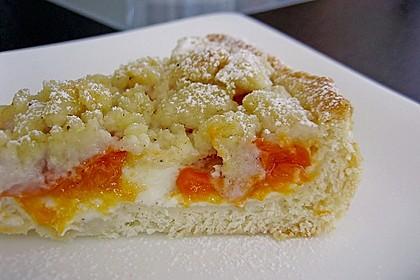 Tarte aux Abricots 83