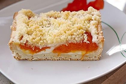 Tarte aux Abricots 2